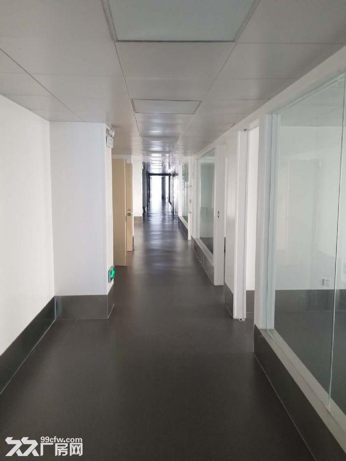 苏州吴江好地段一幢6100平米单层行车厂房出租-图(4)
