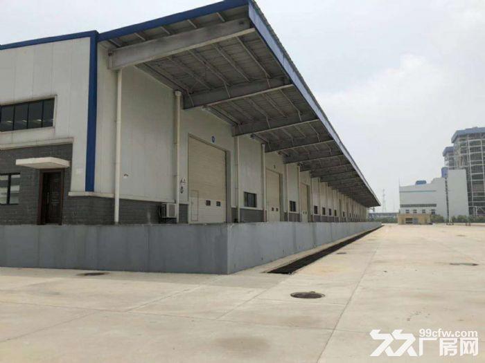 新洲阳逻电厂2250平仓库出租-图(5)