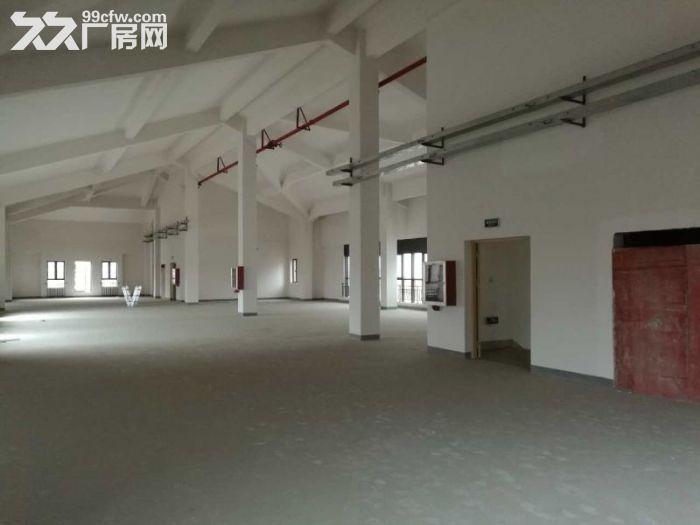 松江工业区有轨电车旁独栋厂房出租面积300到2500平方全新厂房-图(3)