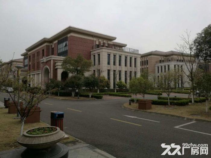 松江工业区有轨电车旁独栋厂房出租面积300到2500平方全新厂房-图(1)