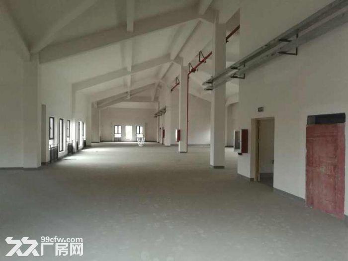 松江工业区有轨电车旁独栋厂房出租面积300到2500平方全新厂房-图(4)