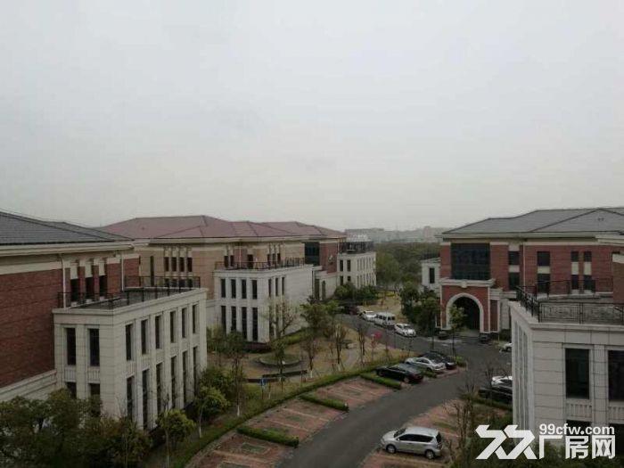 松江工业区有轨电车旁独栋厂房出租面积300到2500平方全新厂房-图(8)