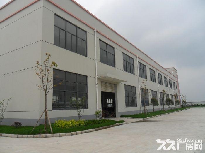 松江洞泾镇厂房办公仓储生产加工小面积随意出租100到500-图(4)