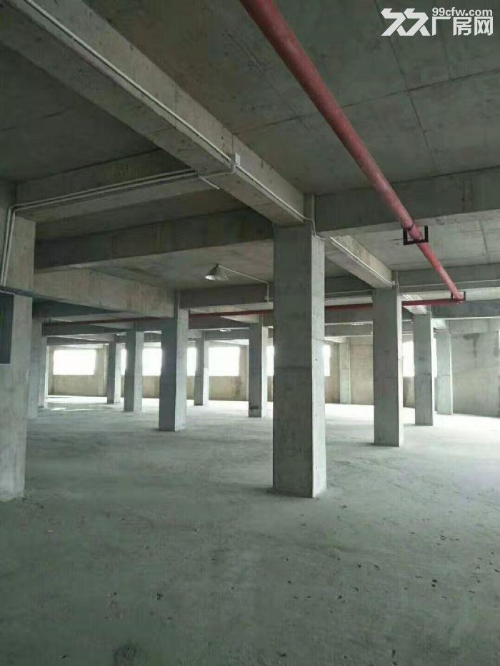 大量标准厂房仓库出租-图(3)