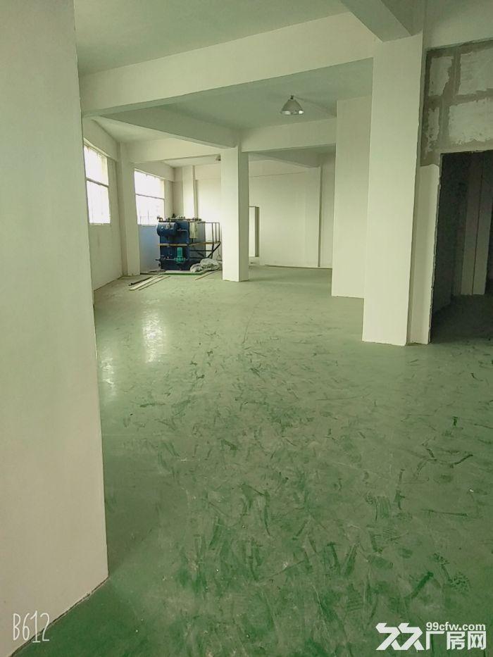 大量标准厂房仓库出租-图(7)