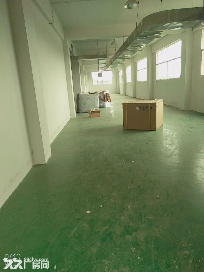 大量标准厂房仓库出租-图(8)