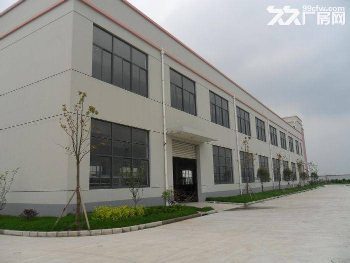 出租松江车墩独院9米厂房办公仓储生产加工-图(3)