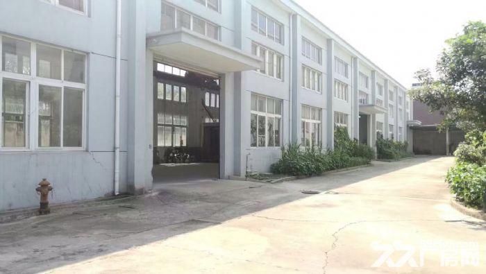 出租松江车墩独院9米厂房办公仓储生产加工-图(7)