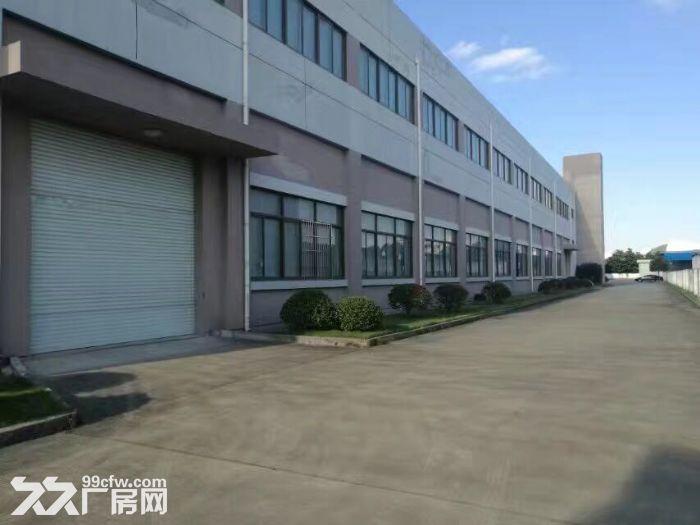 出租松江车墩独院9米厂房办公仓储生产加工-图(8)