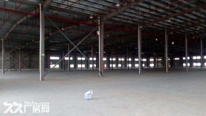 珠海金湾1000~17000平方单一层厂房出租-图(3)