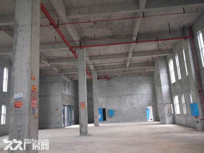 独栋!!!轻工业好厂房1500平方米-图(3)