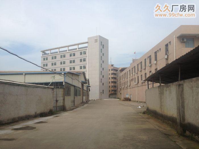南环路中段全新厂房出租/钢结构厂房出租-图(2)