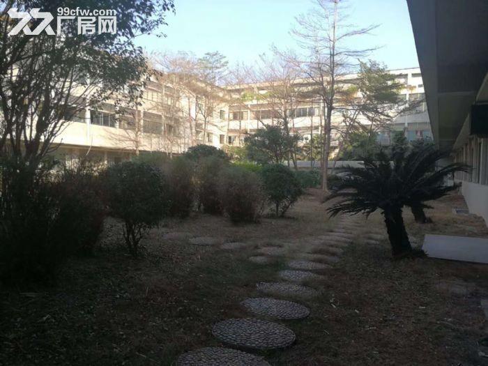 禅城张槎花园式厂房带豪装写字楼隆重招商,最少100平方米起租-图(1)