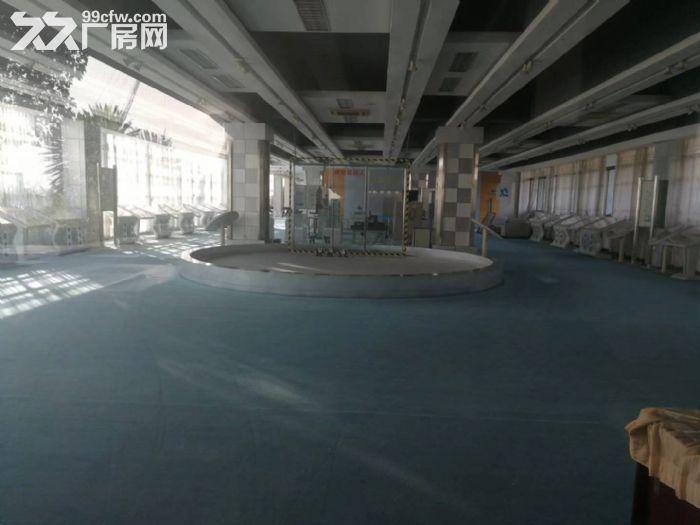 禅城张槎花园式厂房带豪装写字楼隆重招商,最少100平方米起租-图(2)