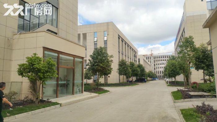 德阳国际生物医药科技产业园独栋厂房出租出售-图(2)