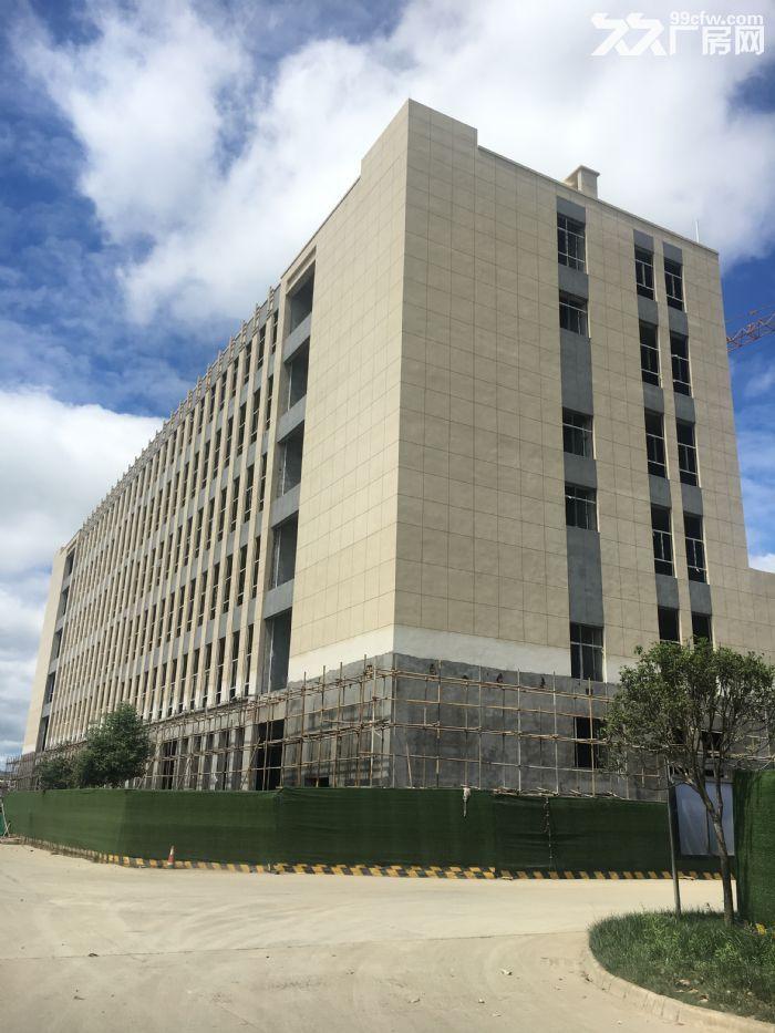德阳国际生物医药科技产业园独栋厂房出租出售-图(3)