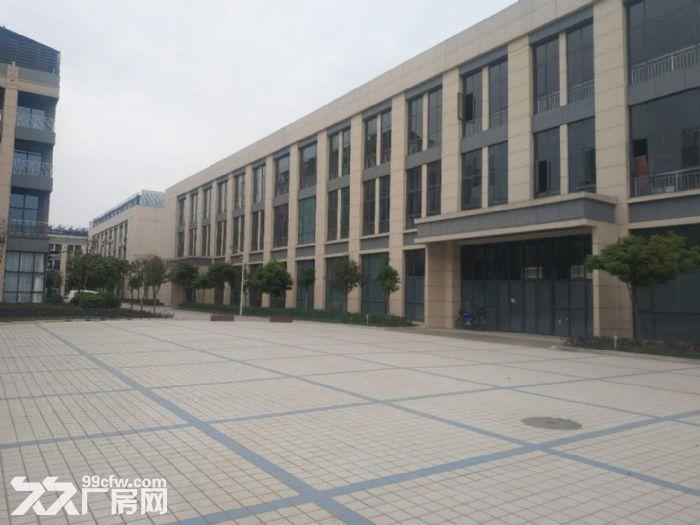 德阳国际生物医药科技产业园独栋厂房出租出售-图(5)