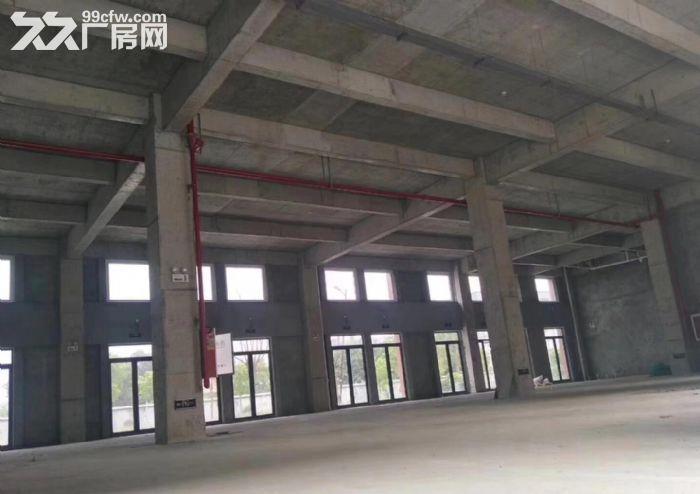 栖霞新港1200平米厂房独栋出租丨1200平米-图(1)