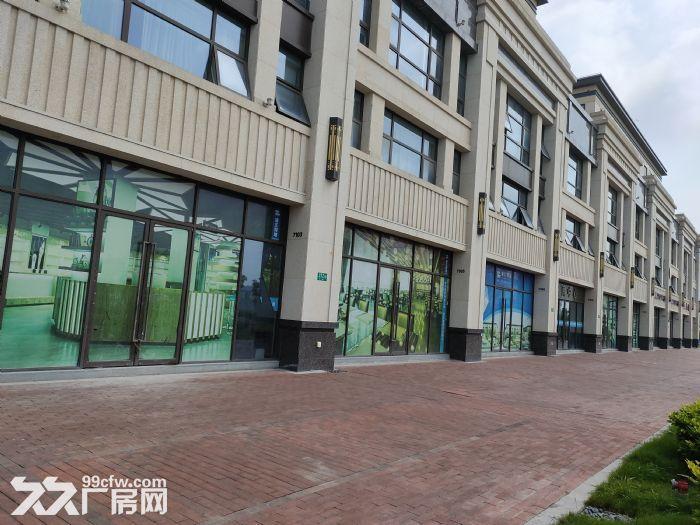 浦江临街地铁旁1100平可做汽车4S店展示展厅104可环评-图(4)