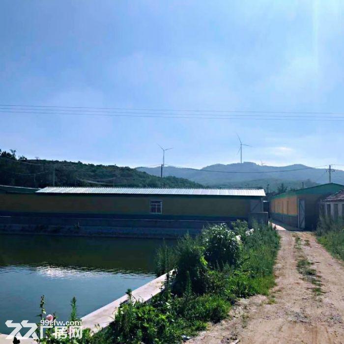 牟平刘家夼北徐格庄村5亩鱼塘以及四合院-图(1)