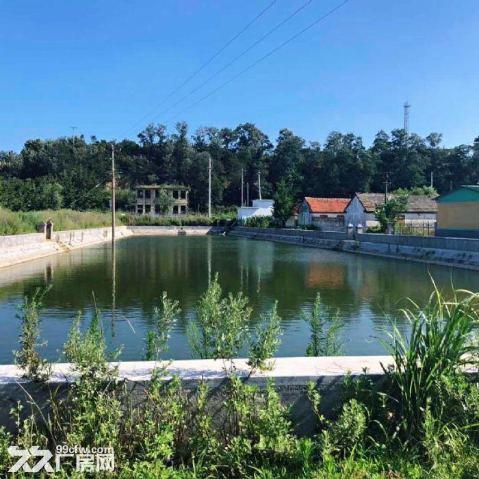 牟平刘家夼北徐格庄村5亩鱼塘以及四合院-图(2)