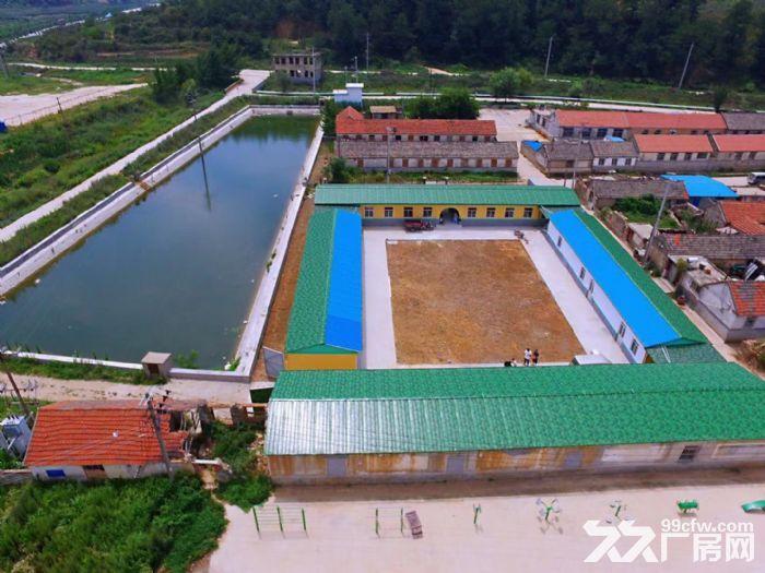 牟平刘家夼北徐格庄村5亩鱼塘以及四合院-图(4)