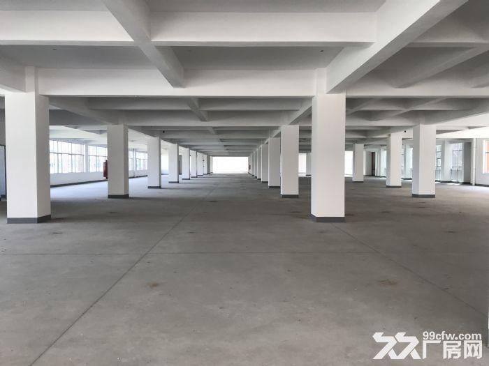 珠海全新工业厂房,面积大,空地多,-图(2)
