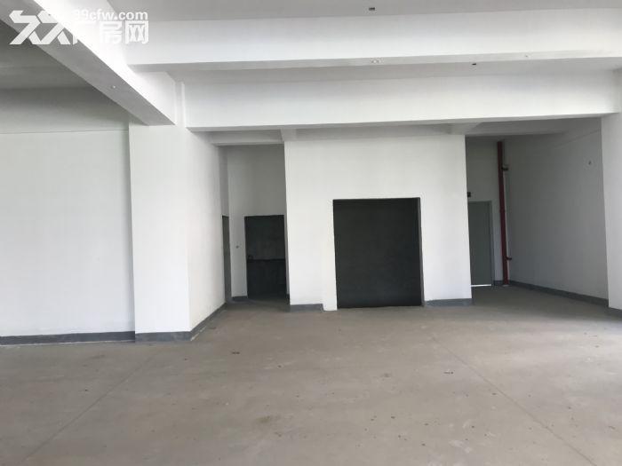 珠海全新工业厂房,面积大,空地多,-图(3)