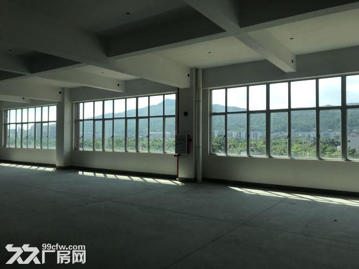 珠海全新工业厂房,面积大,空地多,-图(4)