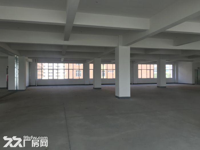 珠海全新工业厂房,面积大,空地多,-图(5)