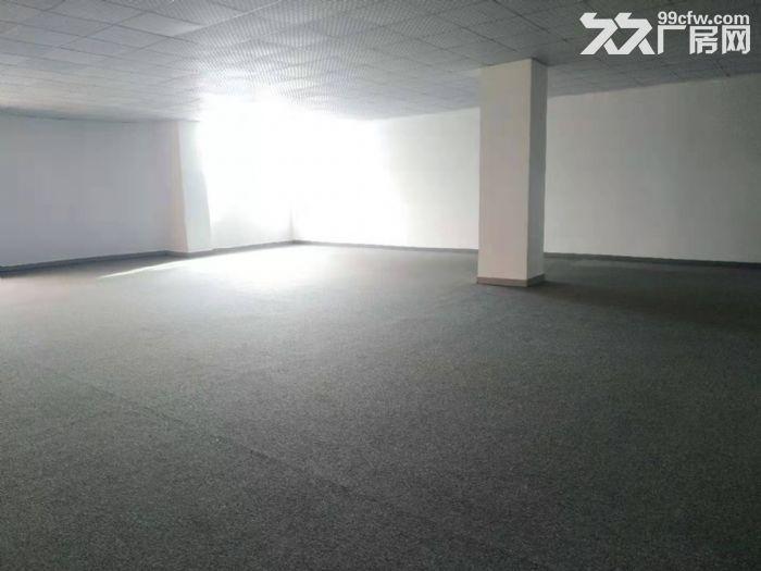 坂田五和地铁站天虹附近楼上新出268平精装办公室-图(2)