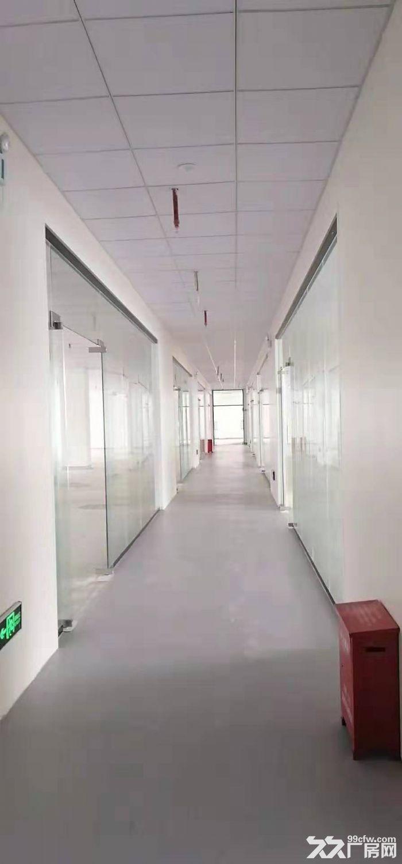 坂田五和地铁站天虹附近楼上新出268平精装办公室-图(3)