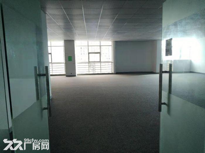 坂田五和地铁站天虹附近楼上新出268平精装办公室-图(4)