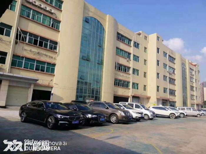坂田五和地铁站天虹附近楼上新出268平精装办公室-图(6)