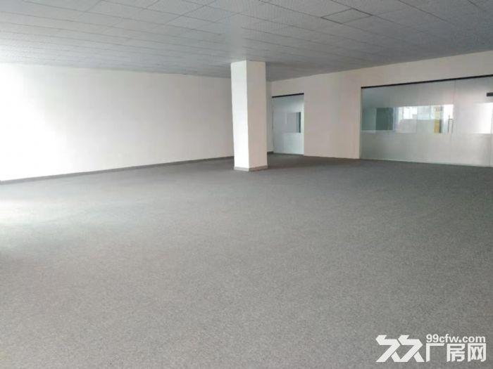 坂田五和地铁站天虹附近楼上新出268平精装办公室-图(8)