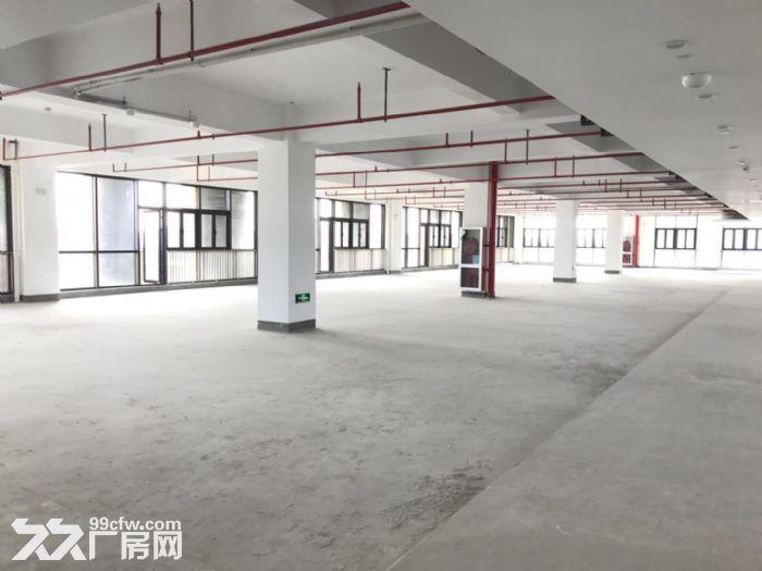 开发商直招,104板块,新园区,近地铁15号线元江路站-图(7)