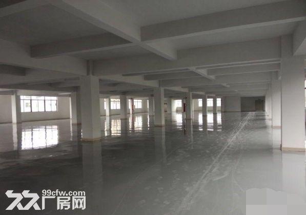 青浦重固底楼厂房面积1500方火热招租-图(3)