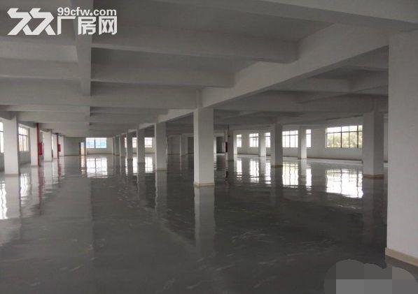 青浦重固底楼厂房面积1500方火热招租-图(4)