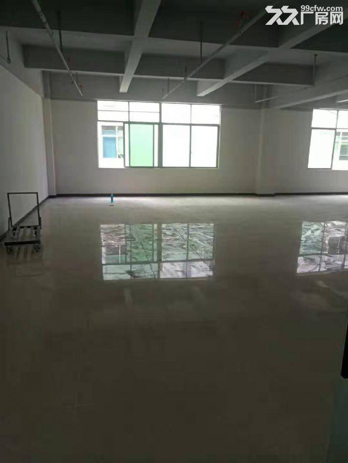 坂田杨美地铁站500米新装修办公室144平至2000平大小可分-图(3)