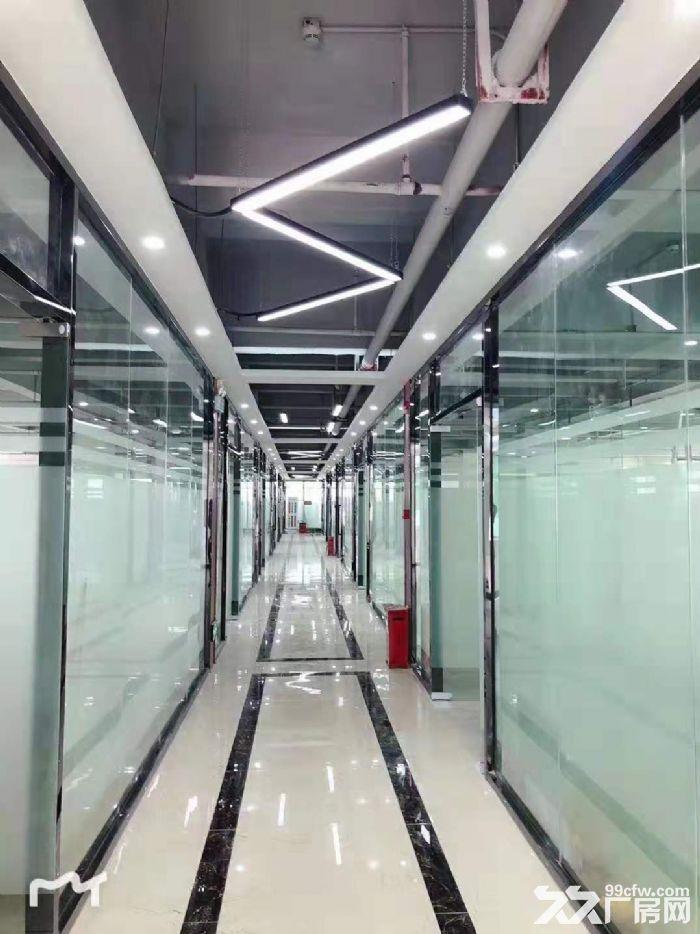 坂田杨美地铁站500米新装修办公室144平至2000平大小可分-图(5)