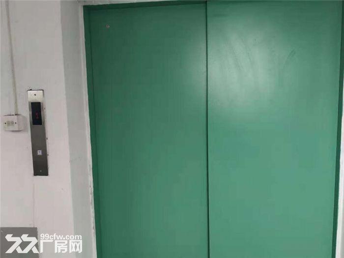 独门独院、两证有货梯适合仓库电子等-图(5)