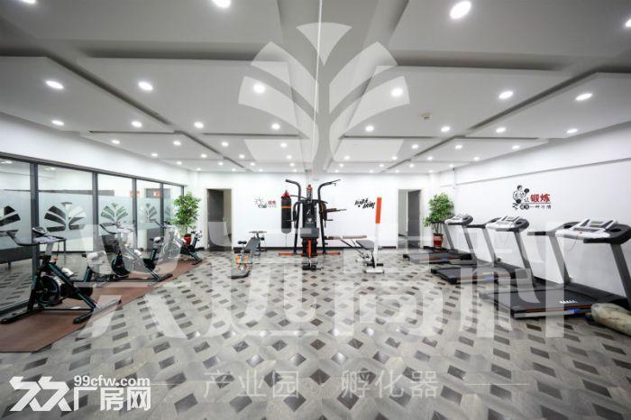 朝南办公室,采光好精装修出租,可ZC-图(3)