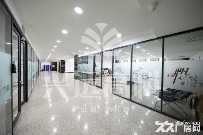 朝南办公室,采光好精装修出租,可ZC-图(5)