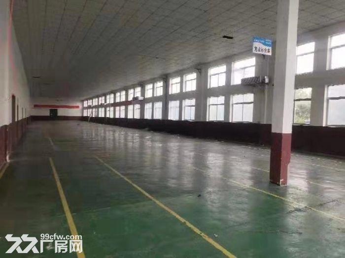 标准厂房出租,厂房面积5000平米,位于海阳工业园内巴黎路5号-图(3)