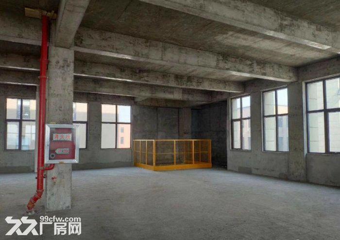 江北新区独栋厂房1600~2000平可按揭-图(2)