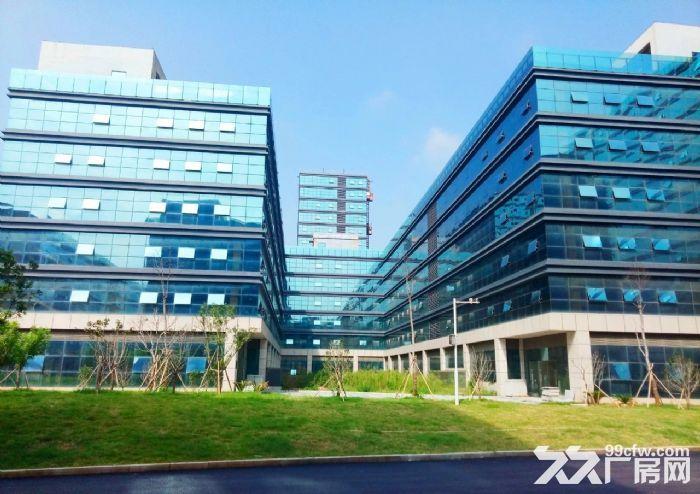 尚荣城科技产业园厂房,写字楼招租-图(2)