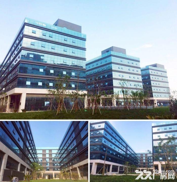 尚荣城科技产业园厂房,写字楼招租-图(5)