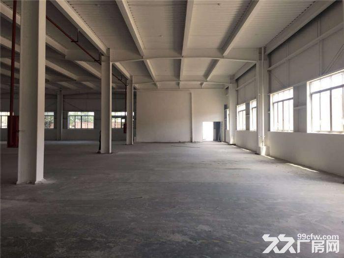 标准有工业房产证、可分租2800方可办环评厂房-图(4)