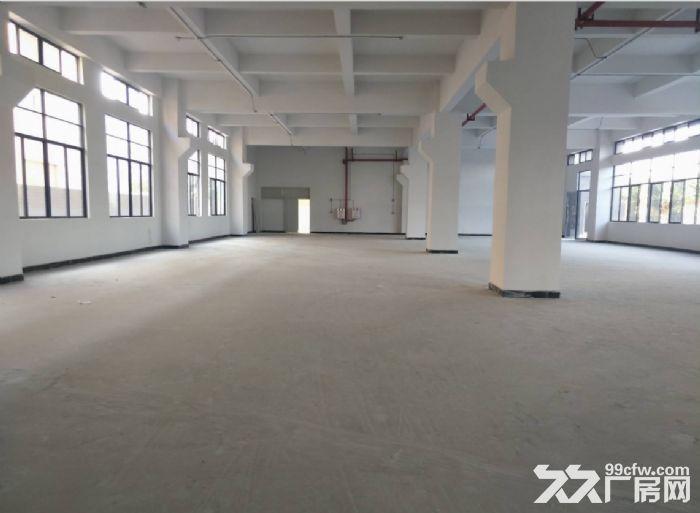 广州白云一楼标准厂房750平招租,水电齐全-图(3)