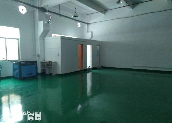 广州白云金沙洲新出厂房一楼800平方(现成装修)-图(1)
